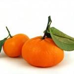 Propiedades nutritivas de la mandarina